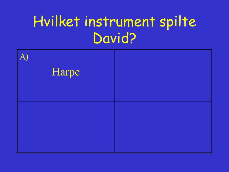 Hvilket instrument spilte David