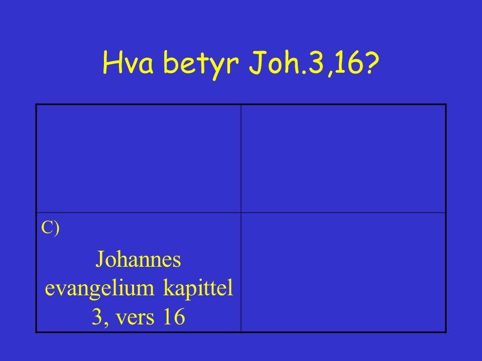 Johannes evangelium kapittel 3, vers 16