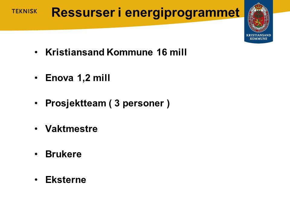 Ressurser i energiprogrammet