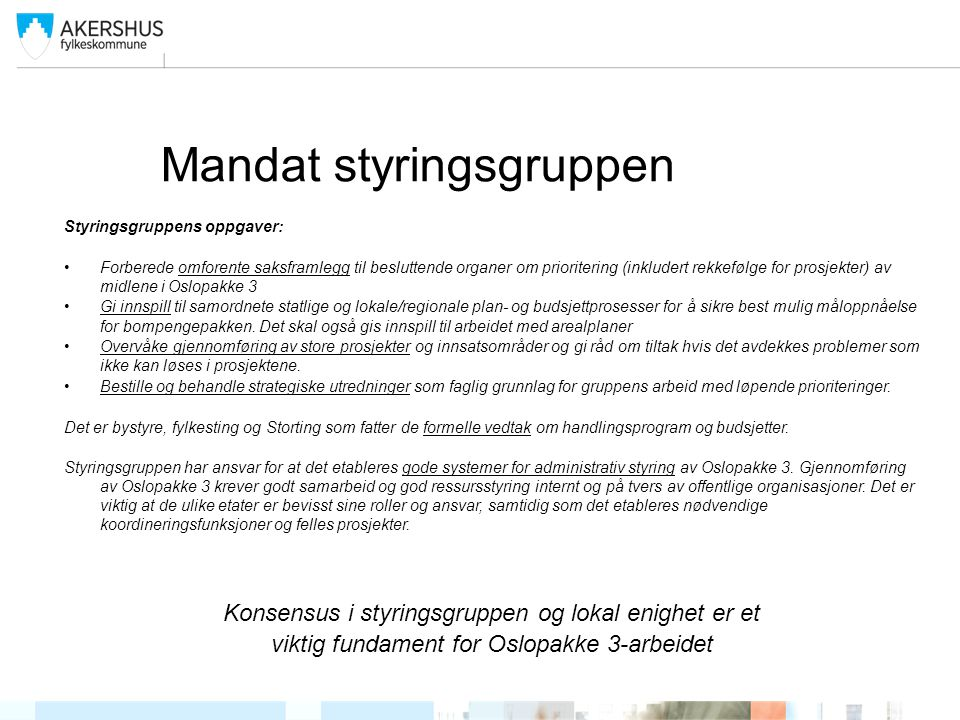 Mandat styringsgruppen