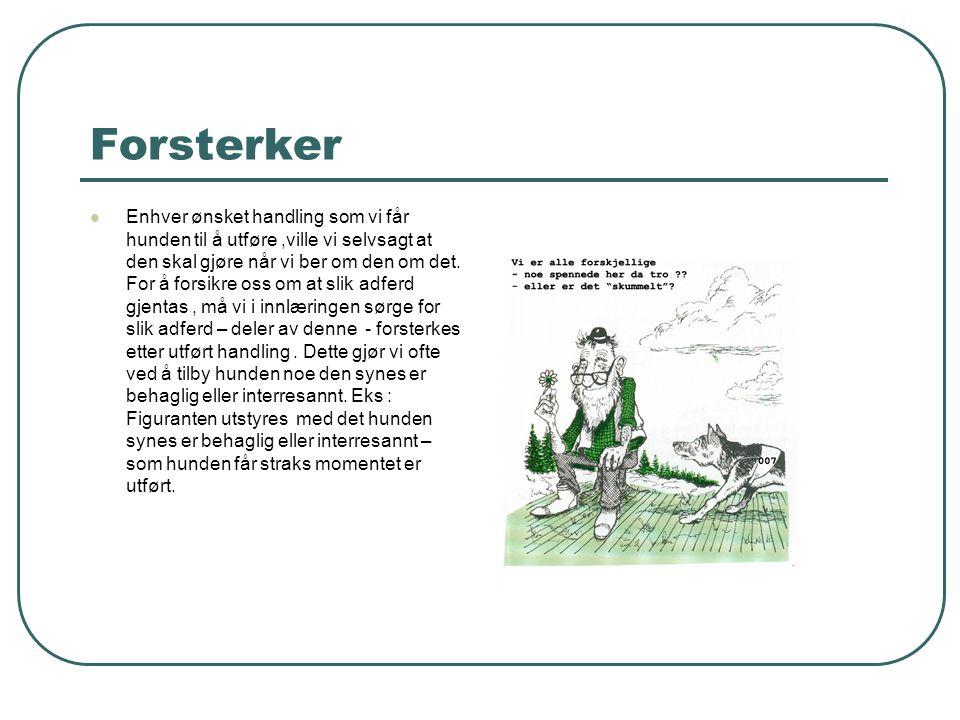 Forsterker