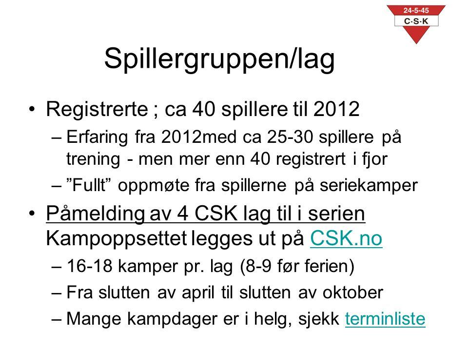 Spillergruppen/lag Registrerte ; ca 40 spillere til 2012