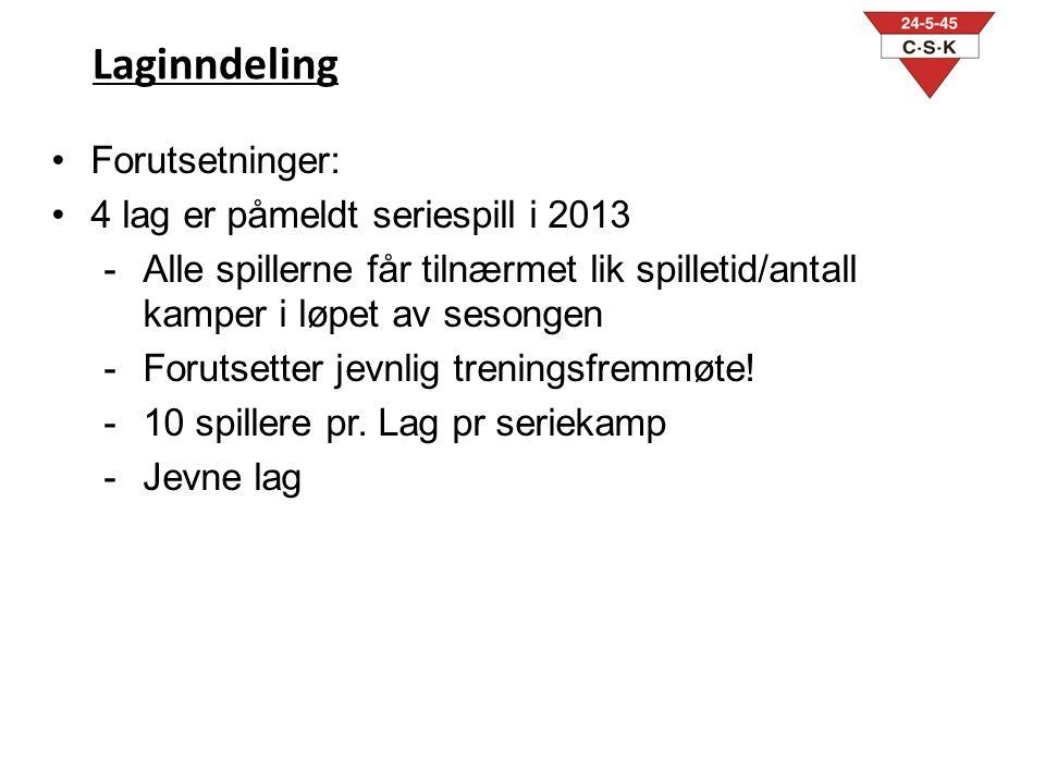 Laginndeling Forutsetninger: 4 lag er påmeldt seriespill i 2013