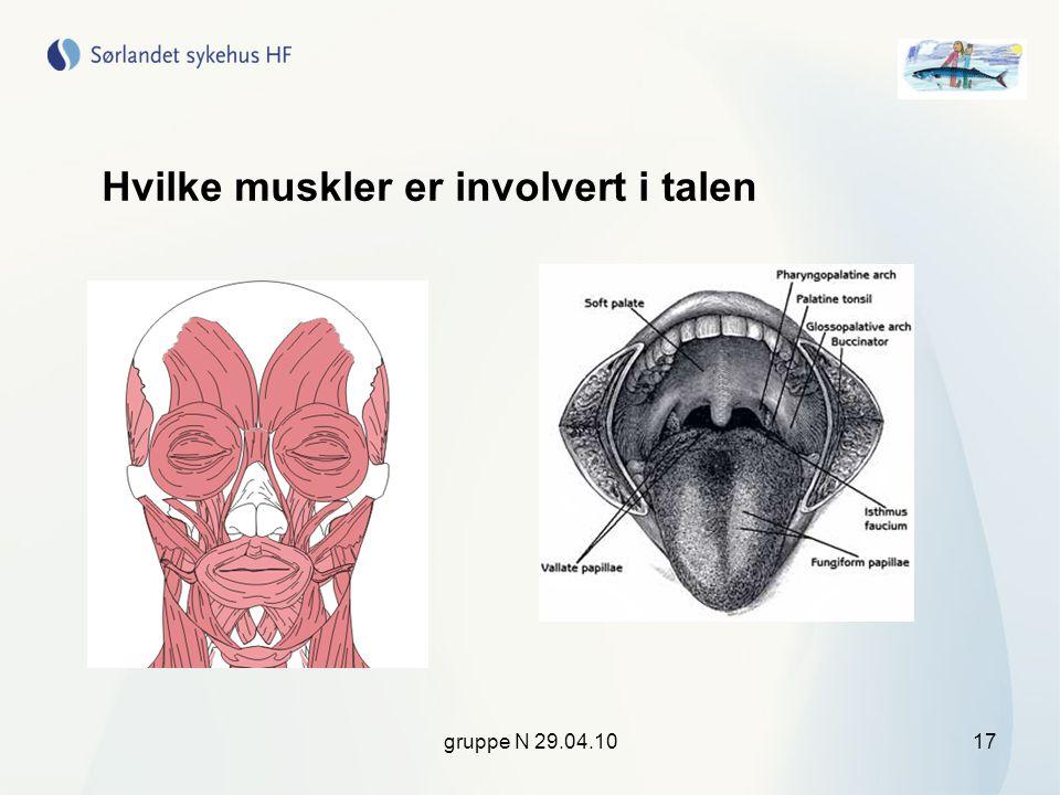 Hvilke muskler er involvert i talen
