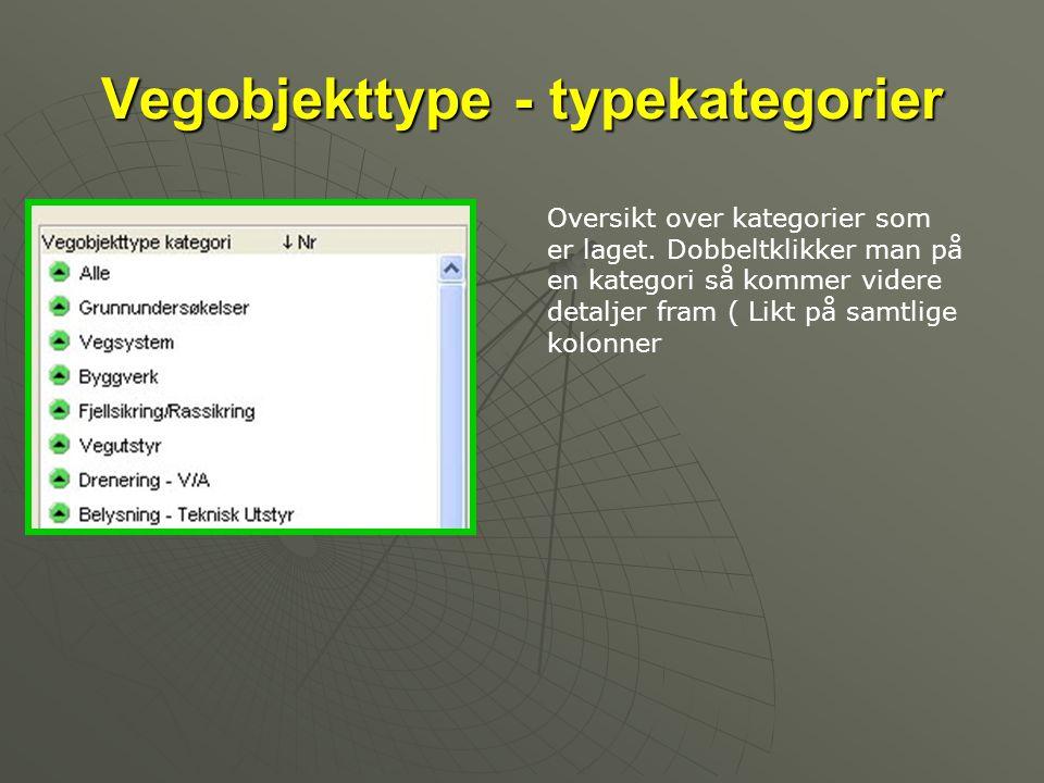 Vegobjekttype - typekategorier