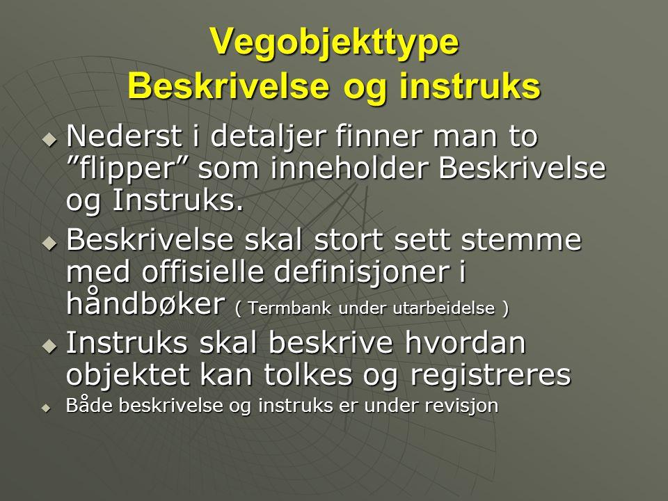 Vegobjekttype Beskrivelse og instruks