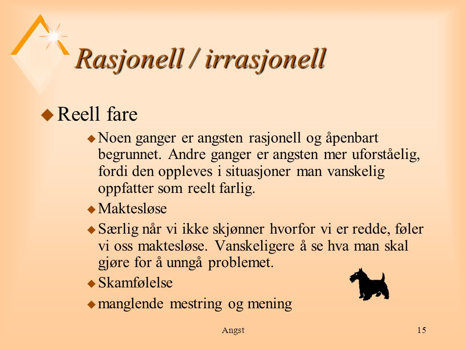 Rasjonell / irrasjonell