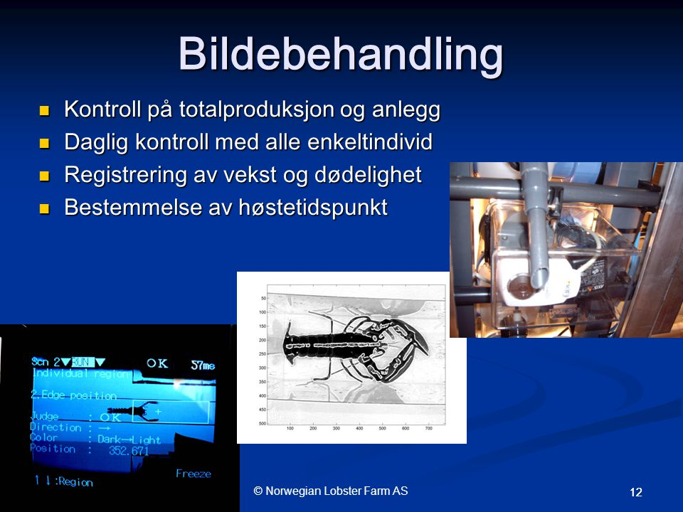 Bildebehandling Kontroll på totalproduksjon og anlegg