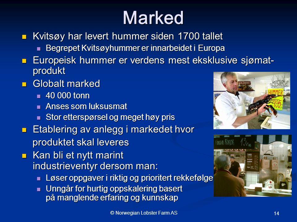Marked Kvitsøy har levert hummer siden 1700 tallet