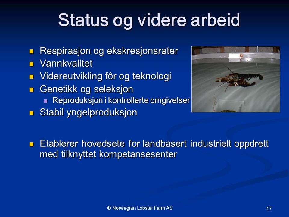 Status og videre arbeid