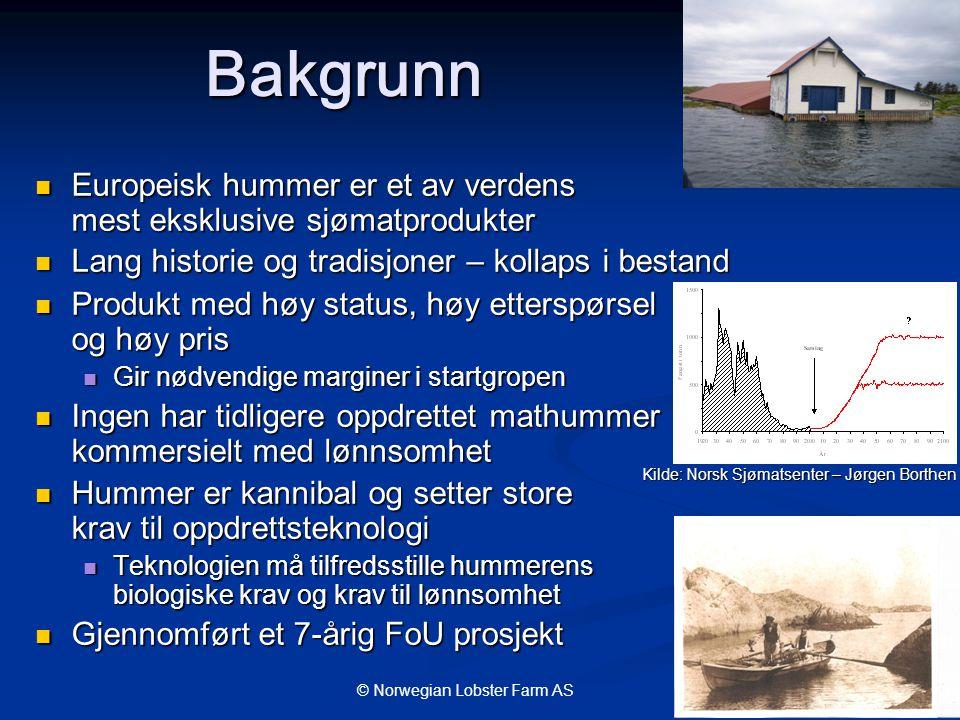 Bakgrunn Europeisk hummer er et av verdens mest eksklusive sjømatprodukter. Lang historie og tradisjoner – kollaps i bestand.