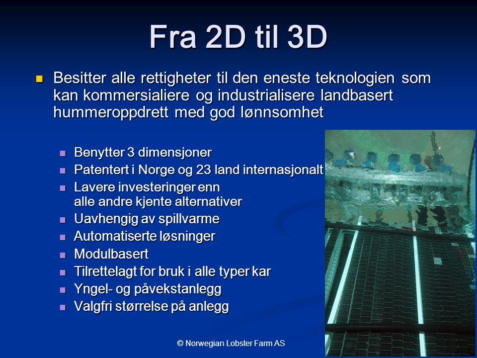 Fra 2D til 3D