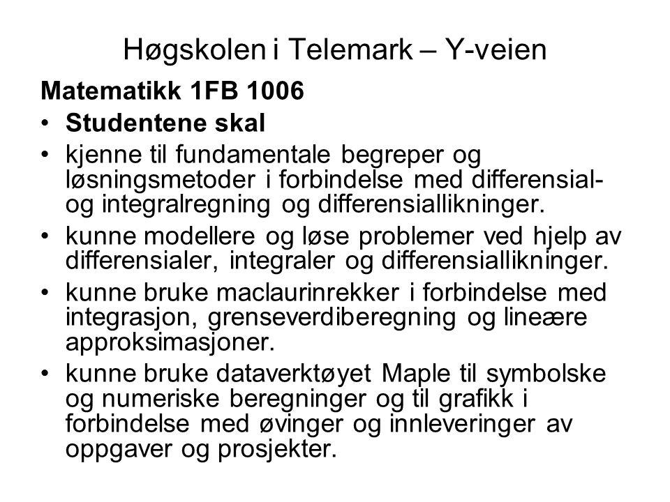 Høgskolen i Telemark – Y-veien