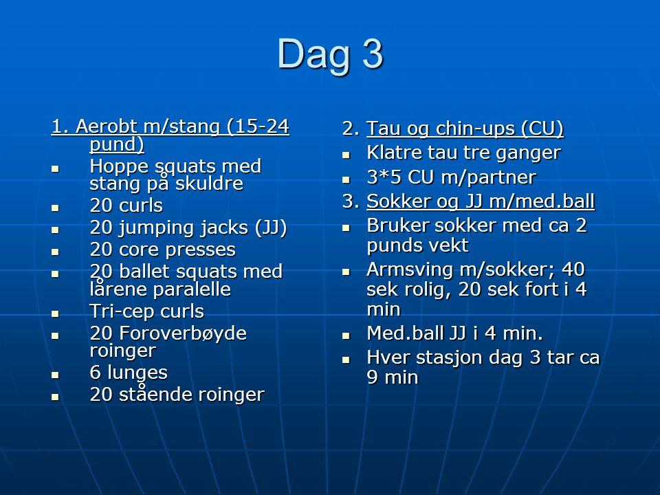 Dag 3 1. Aerobt m/stang (15-24 pund) Hoppe squats med stang på skuldre