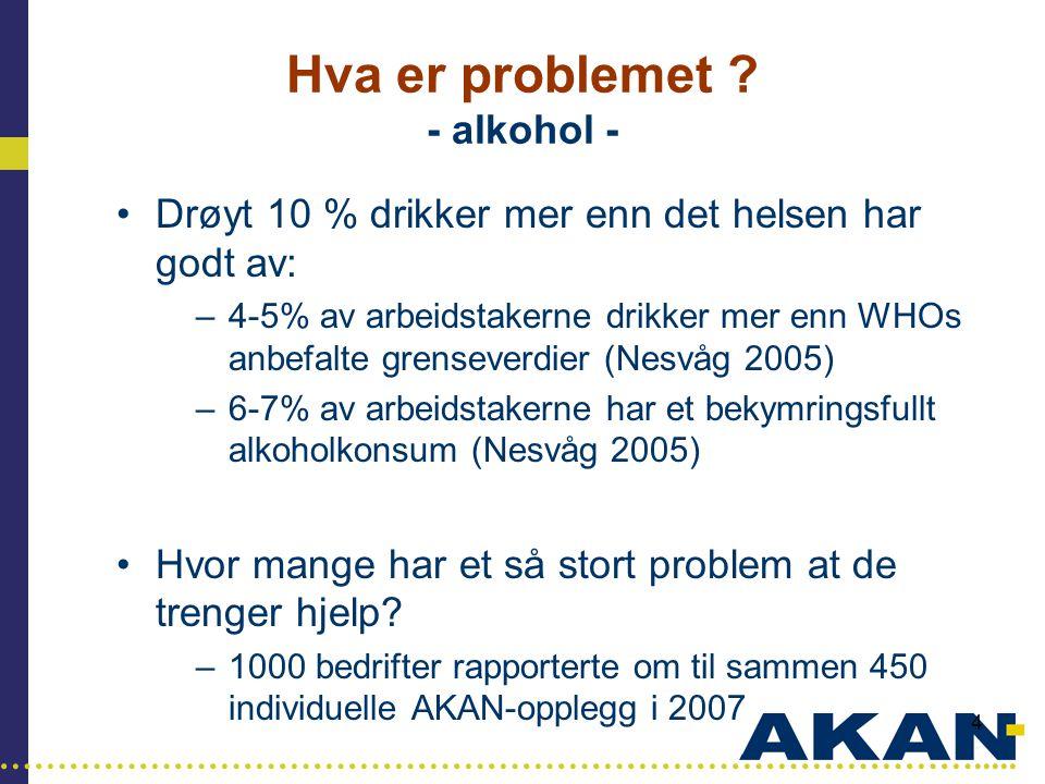 Hva er problemet - alkohol -