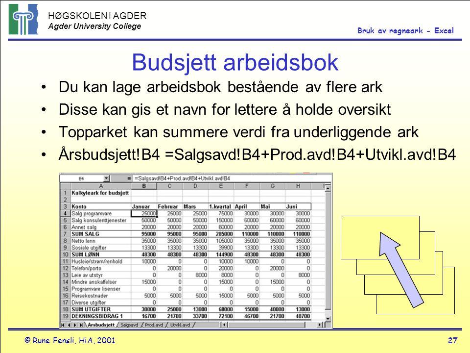 Budsjett arbeidsbok Du kan lage arbeidsbok bestående av flere ark