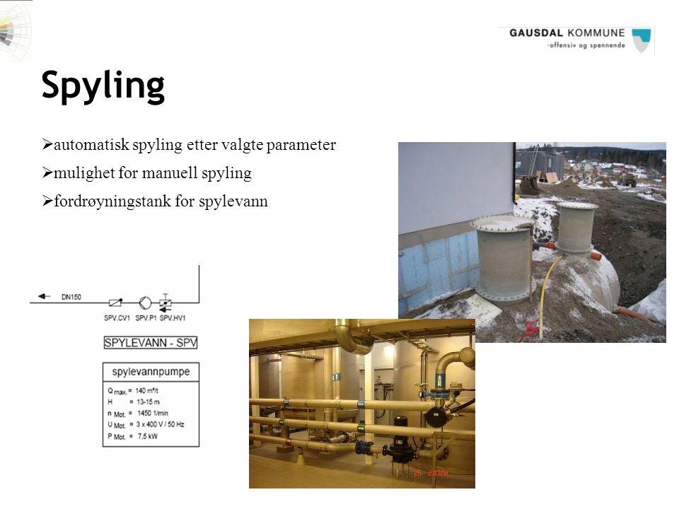 Spyling automatisk spyling etter valgte parameter