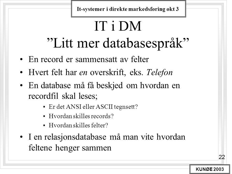 IT i DM Litt mer databasespråk