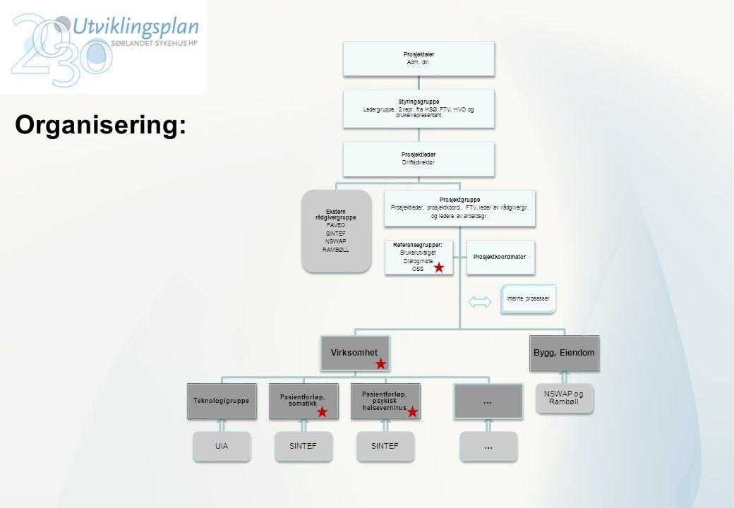 Organisering: Bygg, Eiendom Virksomhet … NSWAP og Rambøll SINTEF UiA