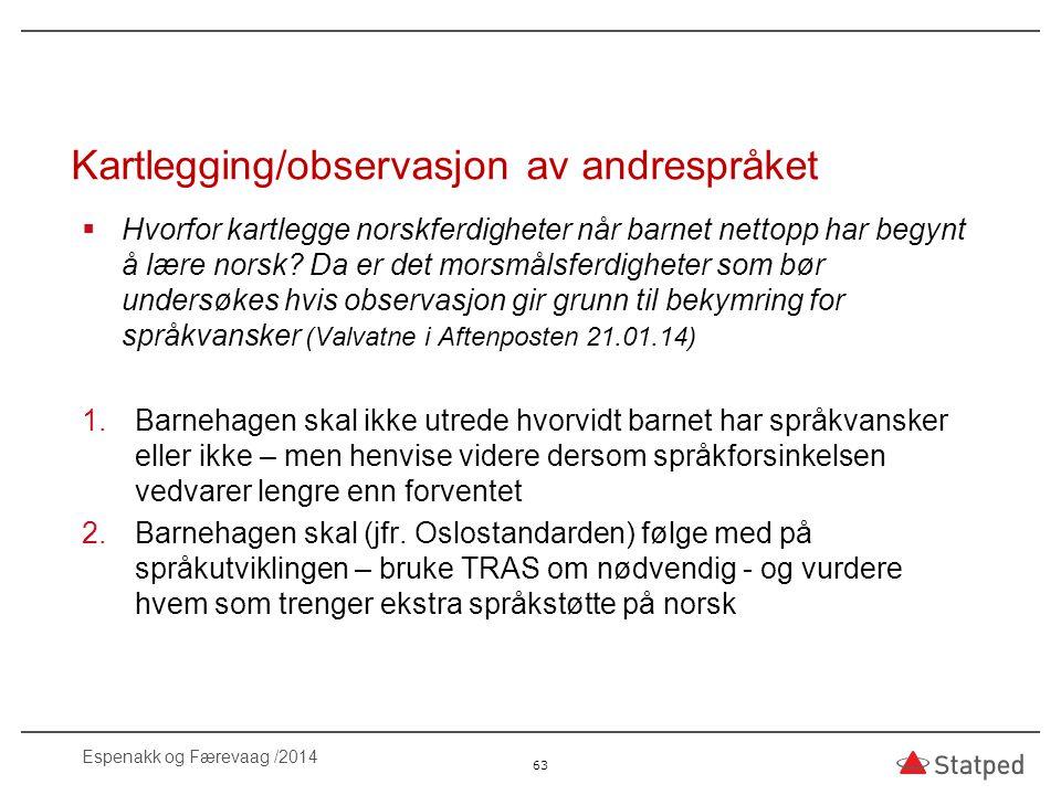 Kartlegging/observasjon av andrespråket