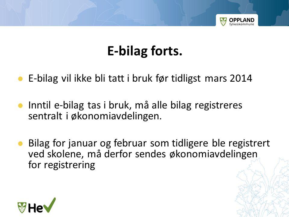 E-bilag forts. E-bilag vil ikke bli tatt i bruk før tidligst mars 2014