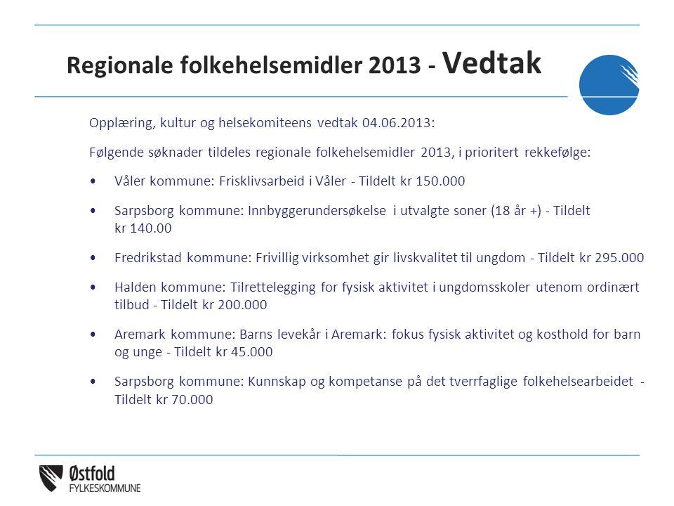 Regionale folkehelsemidler 2013 - Vedtak