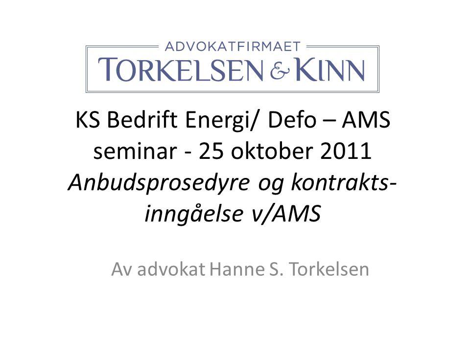 Av advokat Hanne S. Torkelsen