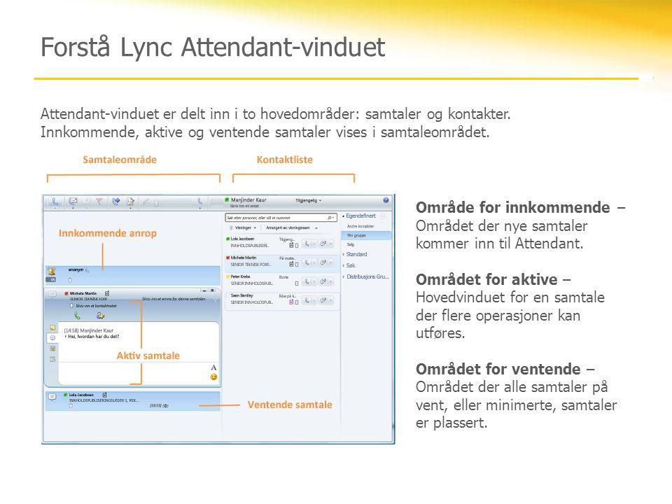 Forstå Lync Attendant-vinduet