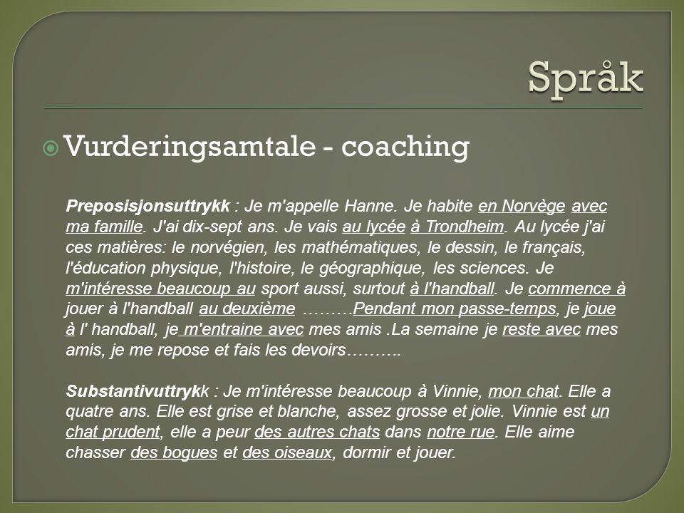 Språk Vurderingsamtale - coaching