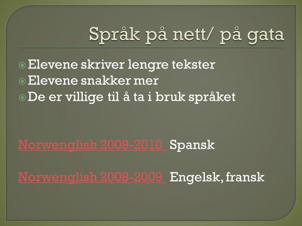 Språk på nett/ på gata Elevene skriver lengre tekster