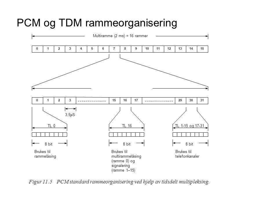 PCM og TDM rammeorganisering