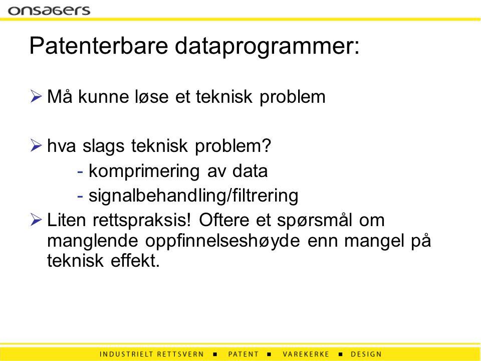 Patenterbare dataprogrammer: