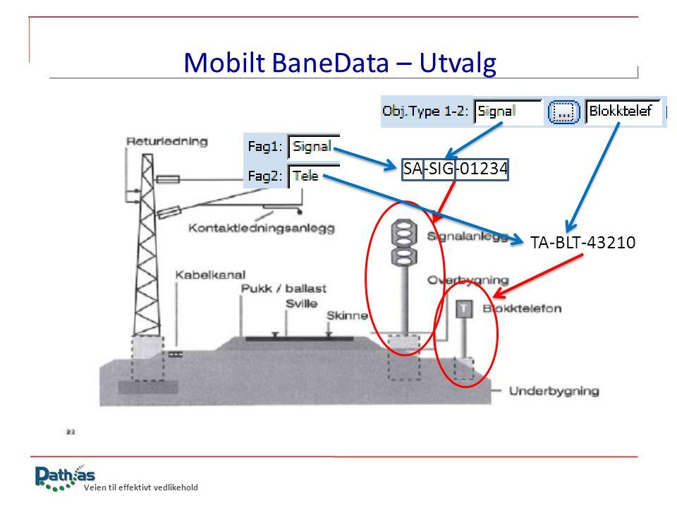 Mobilt BaneData – Utvalg