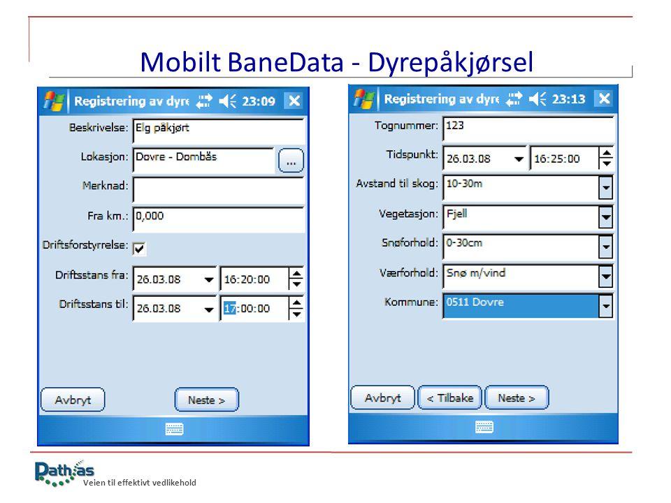 Mobilt BaneData - Dyrepåkjørsel