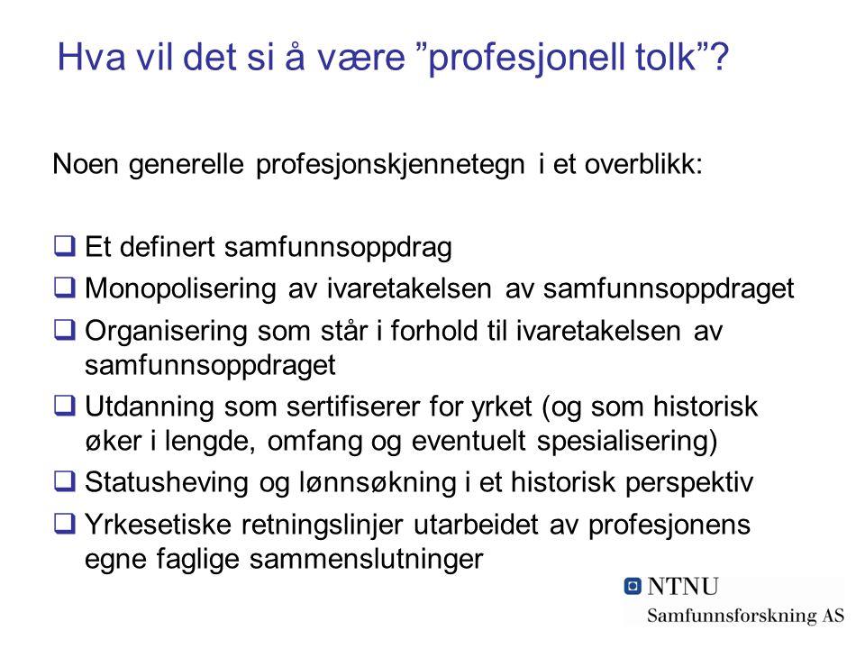 Hva vil det si å være profesjonell tolk