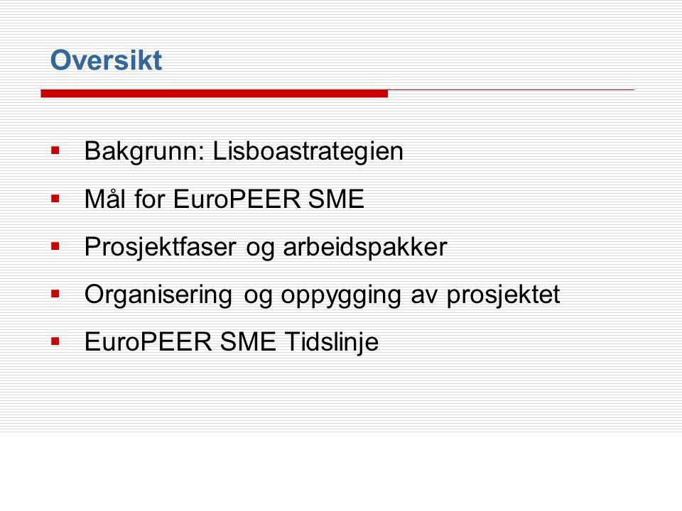 Oversikt Bakgrunn: Lisboastrategien Mål for EuroPEER SME