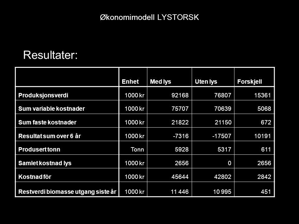 Økonomimodell LYSTORSK