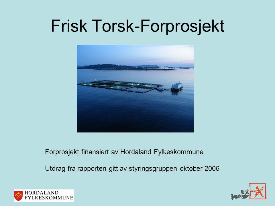 Frisk Torsk-Forprosjekt
