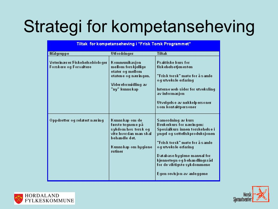 Strategi for kompetanseheving