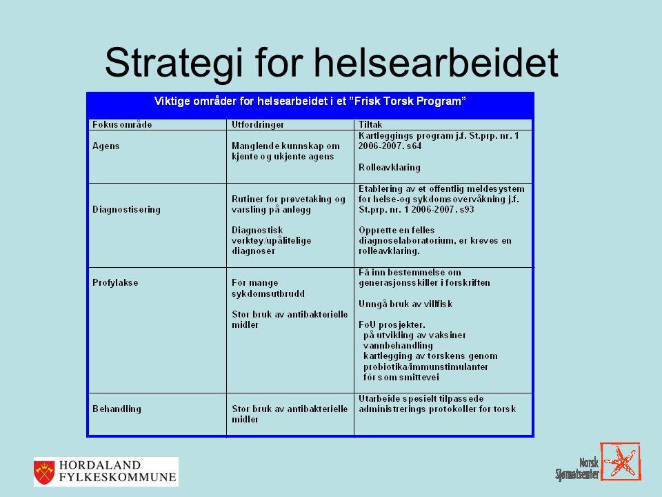 Strategi for helsearbeidet