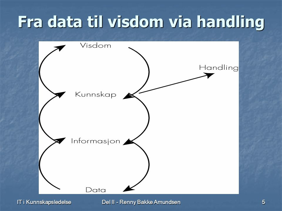 Fra data til visdom via handling
