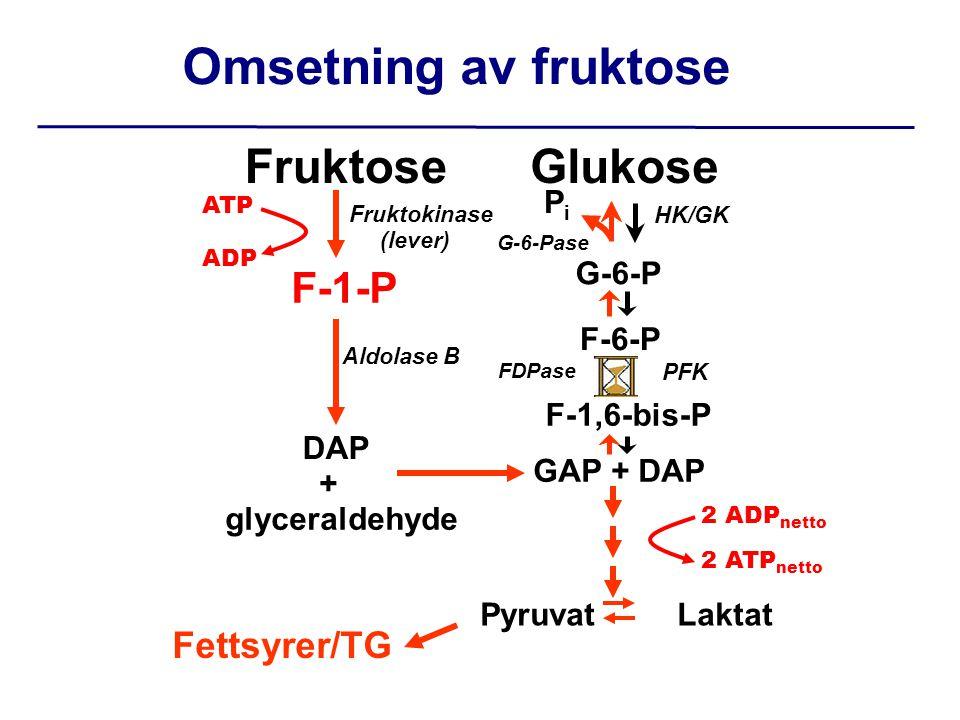 Omsetning av fruktose Fruktose Glukose F-1-P Fettsyrer/TG Pi G-6-P