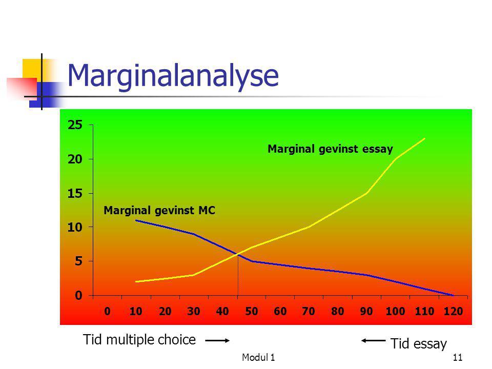 Marginalanalyse Tid multiple choice Tid essay Marginal gevinst essay