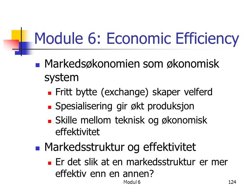 Module 6: Economic Efficiency
