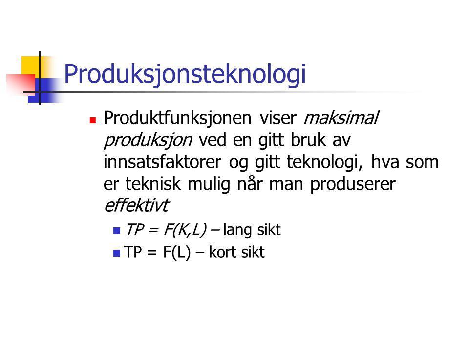 Produksjonsteknologi