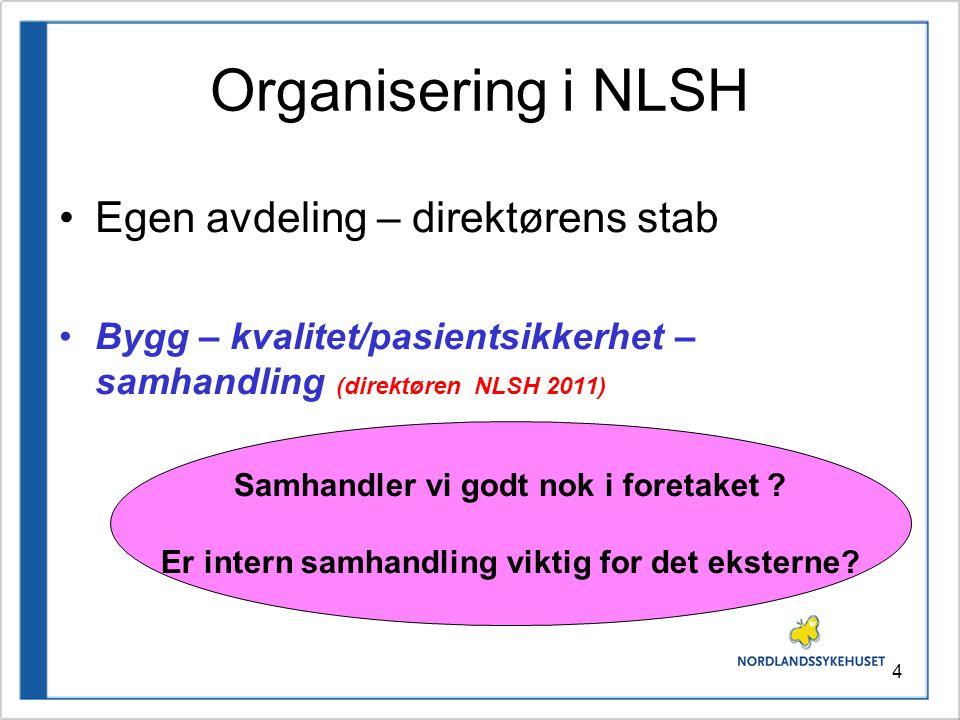 Organisering i NLSH Egen avdeling – direktørens stab
