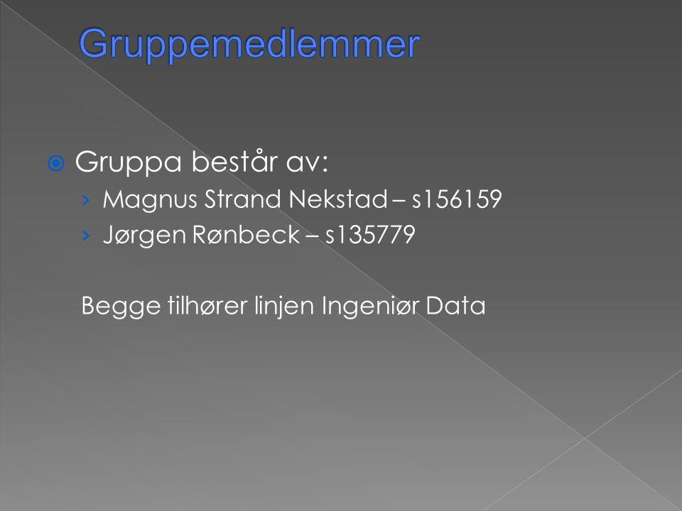 Gruppemedlemmer Gruppa består av: Magnus Strand Nekstad – s156159