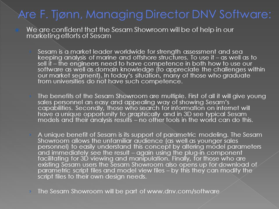 Are F. Tjønn, Managing Director DNV Software: