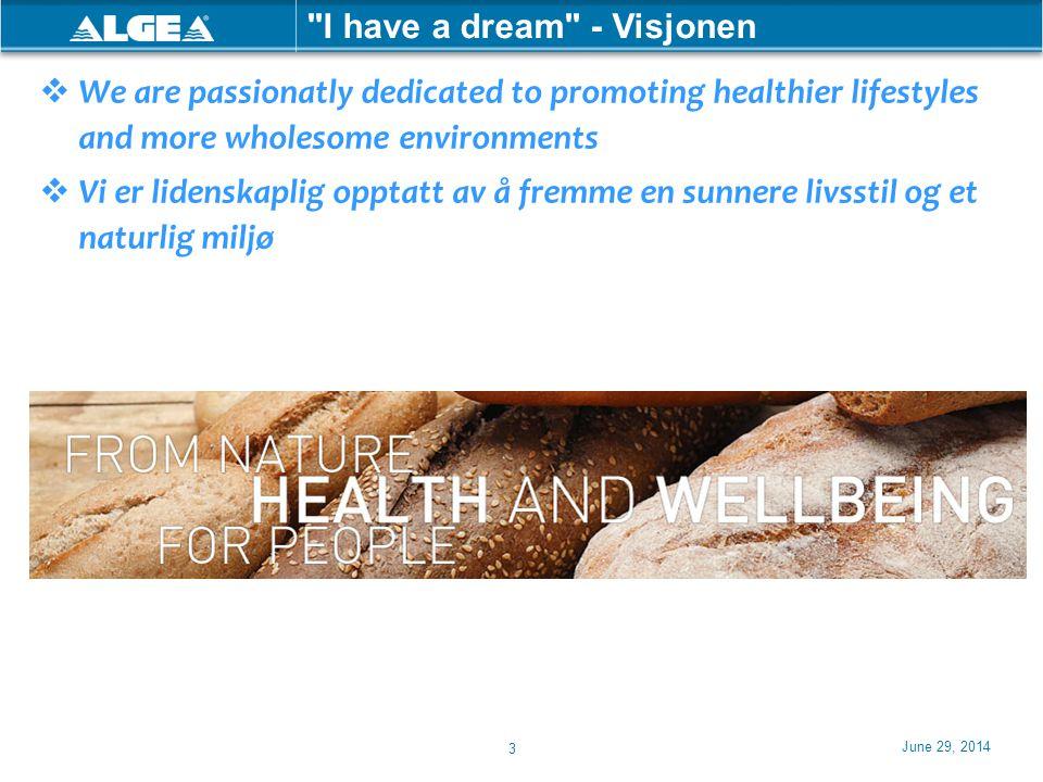 I have a dream - Visjonen