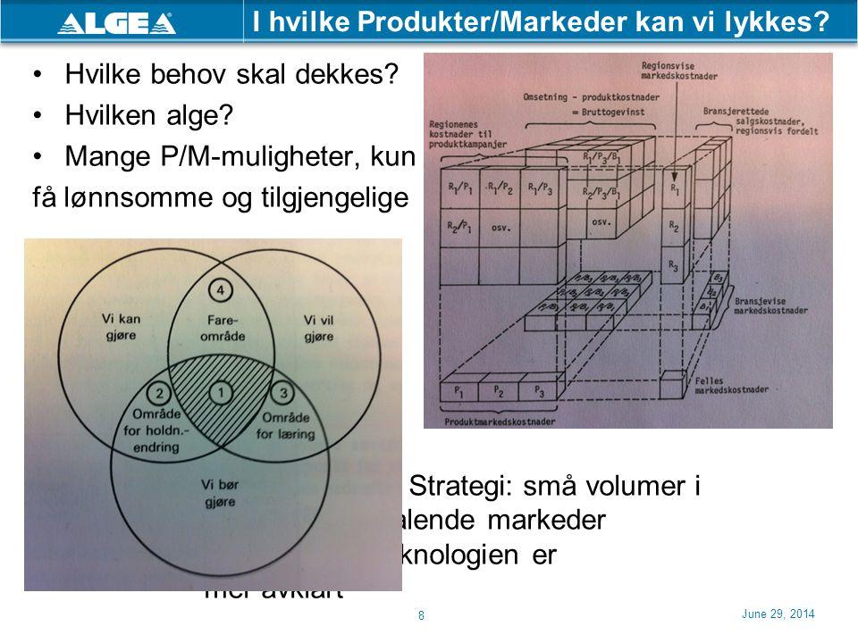 I hvilke Produkter/Markeder kan vi lykkes